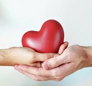 Важным направлением деятельности ОАО «Кондитерская фабрика Ширин» является благотворительность.